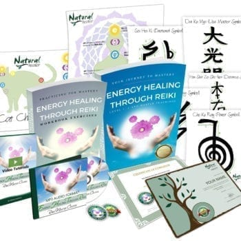 $47 Learn Energy Healing Hand Mudras   Certification Available!
