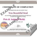 Pets & Animals Cert EXAMPLE