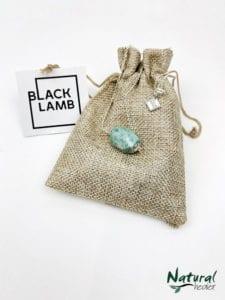 Amazonite Necklace (Throat)
